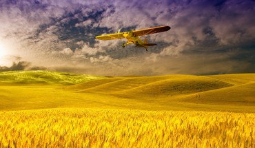 Plane over a field of grain HD wallpaper