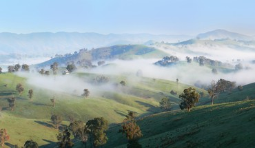 Trees hills fog countryside sunny HD wallpaper