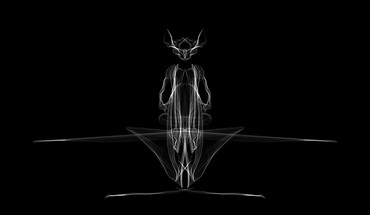 Abstract black white predator HD wallpaper