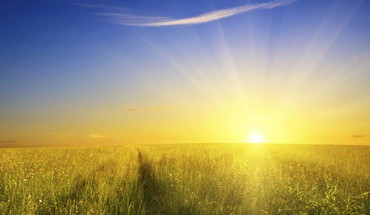 Grass field sunrise pictures HD wallpaper