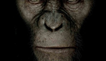 Rise of the Apes planète animaux  HD wallpaper