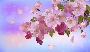Apple inc. digital art artwork blossom bloom HD wallpaper