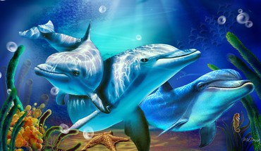 Dolphins and sunbeams HD wallpaper