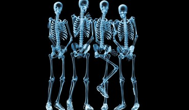 Xray funny skeletons HD wallpaper