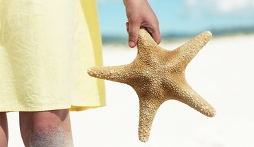 Hands starfish HD wallpaper