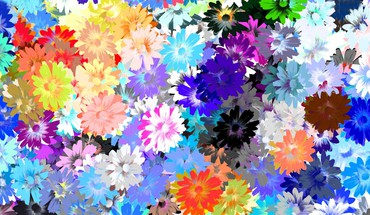 Artwork flowers multicolor HD wallpaper