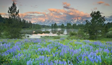 Grand teton national park wyoming landscapes HD wallpaper