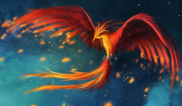 Birds animals fire phoenix feathers digital art artwork HD wallpaper