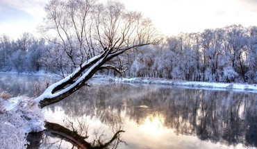 Rivers snow trees HD wallpaper