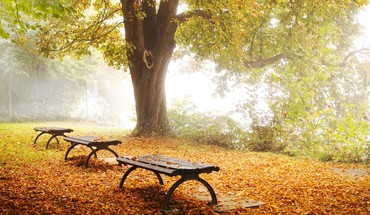 Autumn bench lakes trees HD wallpaper