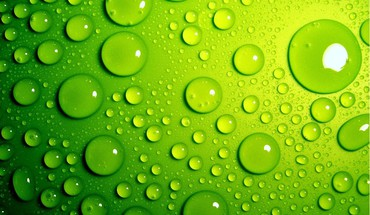 Fresh green backgrounds HD wallpaper