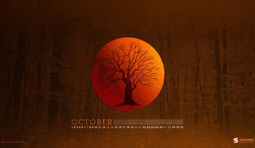 Trees forest moon woods calendar october smashing magazine HD wallpaper