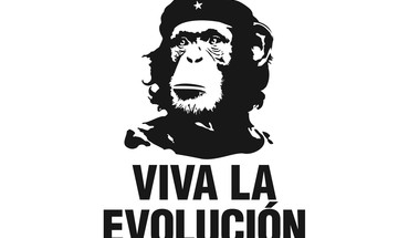 Che guevara evolution funny revolution HD wallpaper
