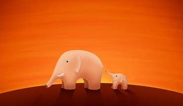 Animals elephants mammals orange HD wallpaper