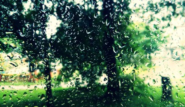 Rain water drops HD wallpaper