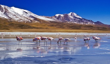 Bolivia nature HD wallpaper