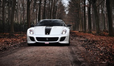 Ferrari 599 gto cars forests stripes HD wallpaper