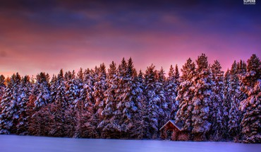 The purple winter sky HD wallpaper