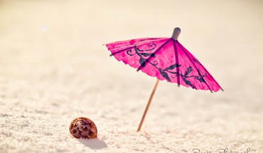 Minimalistic sand shells umbrellas HD wallpaper
