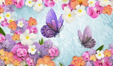 Orchid summer float HD wallpaper