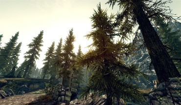 Ночные звезды The Elder Scrolls V: Skyrim  HD wallpaper