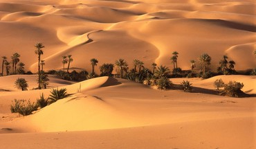 Landscapes nature desert oasis HD wallpaper