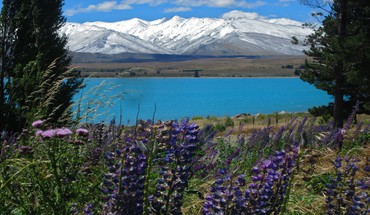 Mt john lake tekapo new zealand HD wallpaper