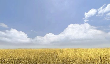 Portal 2 cornfield HD wallpaper