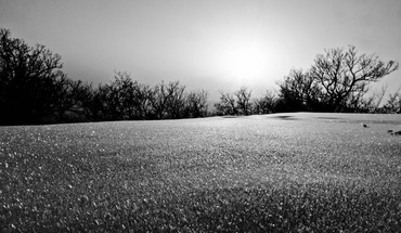 Black and white landscapes nature winter HD wallpaper