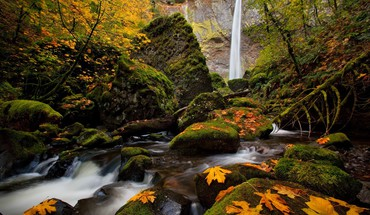Trees autumn (season) leaves waterfalls HD wallpaper