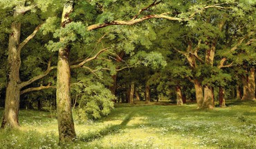 Ivan shishkin artwork forests HD wallpaper