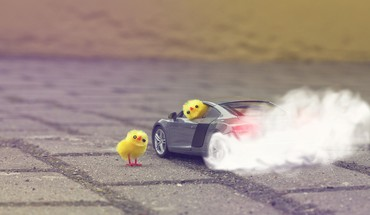 Audi r8 v8 burnout cars chickens HD wallpaper
