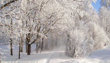 Winter fairytale HD wallpaper