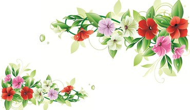 Flower frame  HD wallpaper