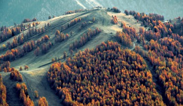 Mountains trees forest tilt-shift HD wallpaper