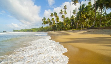 Trinidad beaches landscapes HD wallpaper