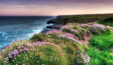 Beaches meadows sea HD wallpaper