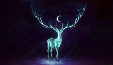 Moon artwork deer fantasy art glowing HD wallpaper