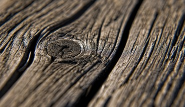 Knot nature textures wood texture HD wallpaper