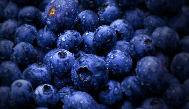 Blueberries fruits macro water drops HD wallpaper