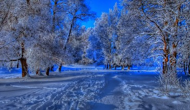 Snowy path in winter HD wallpaper