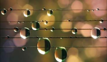 Water drops wire HD wallpaper