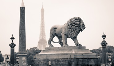 Paris lions statuette  HD wallpaper