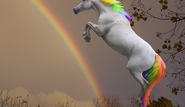 Rainbow horse HD wallpaper