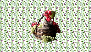 Grape harvest cat nap HD wallpaper