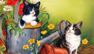 Kittens playing HD wallpaper