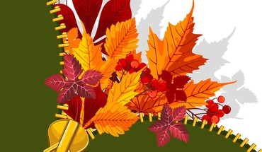 Fall unzipped HD wallpaper