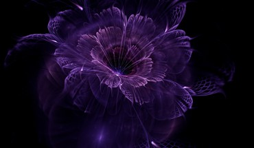 Impalpable purple dream HD wallpaper