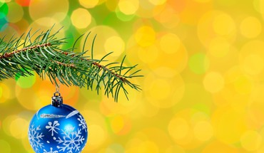 Spruce twig with blue bauble HD wallpaper