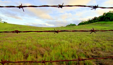 Barbwire fence HD wallpaper